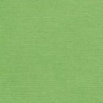 152 - Зеленое яблоко